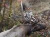 Elk13 2015